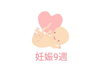 九 週 目 妊娠