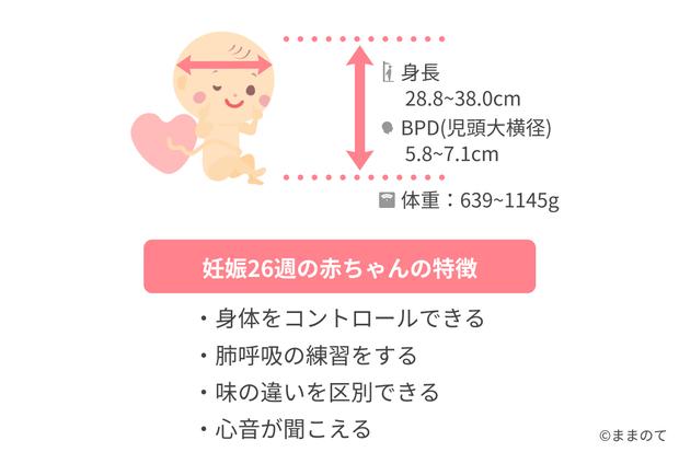 妊娠32週目 逆子は治る?胎児の体重や大き ...