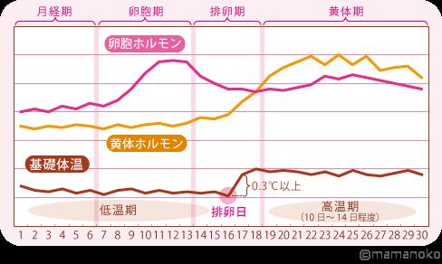 排卵 基礎 日 グラフ 体温